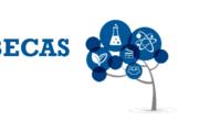 Más Oportunidades en Becas, Cursos, Voluntariados y otras Convocatorias