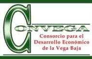 Ofertas de empleo en la Vega Baja